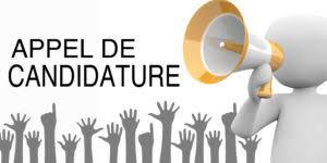 APPEL À CANDIDATURE POUR LES MANIFESTATIONS – DISTRICT DE LA  CHARENTE-MARITIME DE FOOTBALL